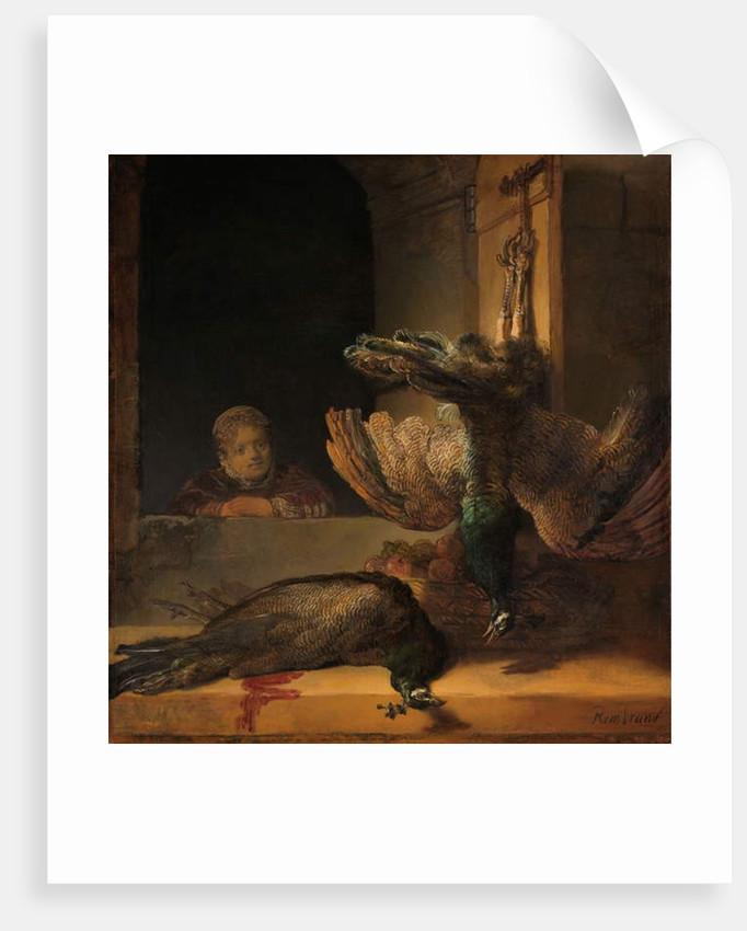 Still Life with Peacocks, c.1639 by Rembrandt Harmensz. van Rijn