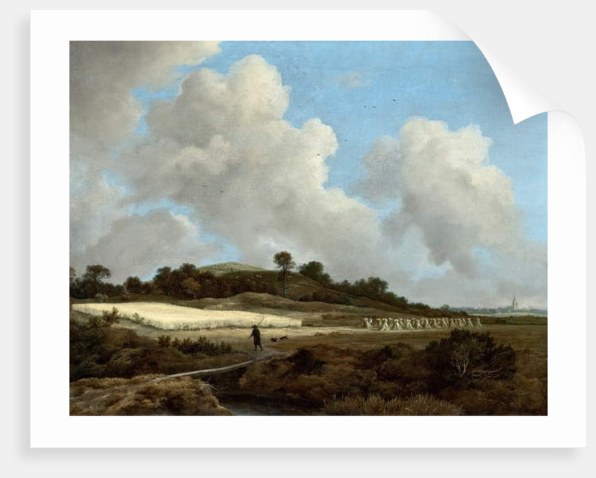 View of Grainfields with a Distant Town, c.1670 by Jacob Isaaksz. or Isaacksz. van Ruisdael