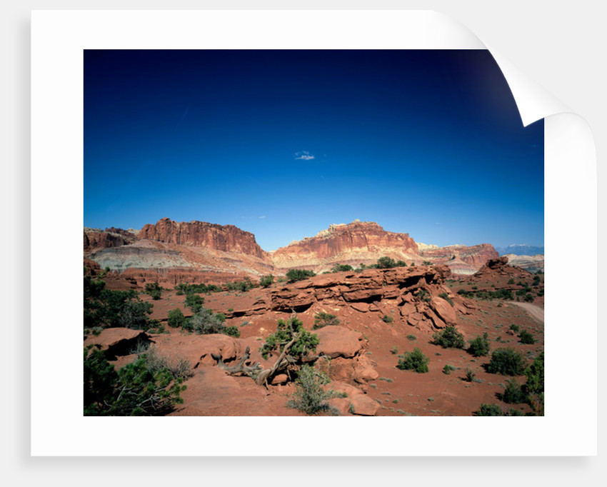 Capitol Dome and Chimney Rock, Capitol Reef National Park, Utah by Unknown