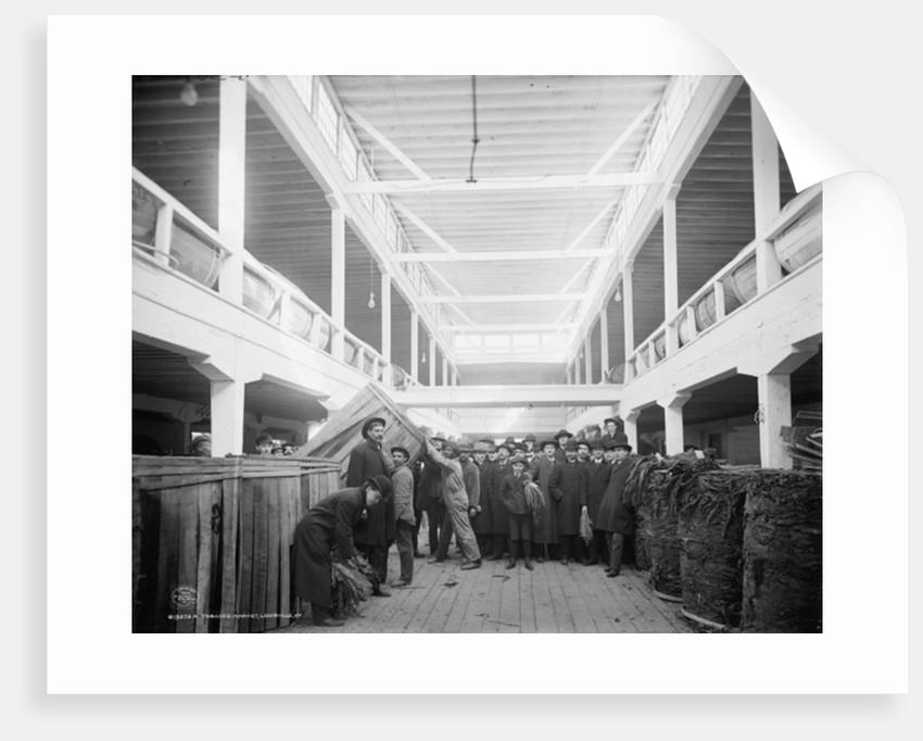 A tobacco market, Louisville, Kentucky by Detroit Publishing Co.