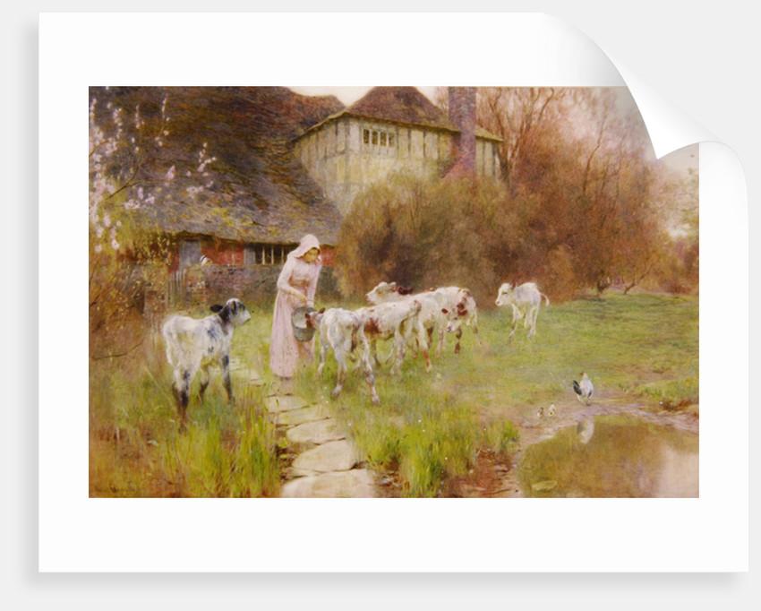 Feeding the Calves by Robert Gustav Meyerheim