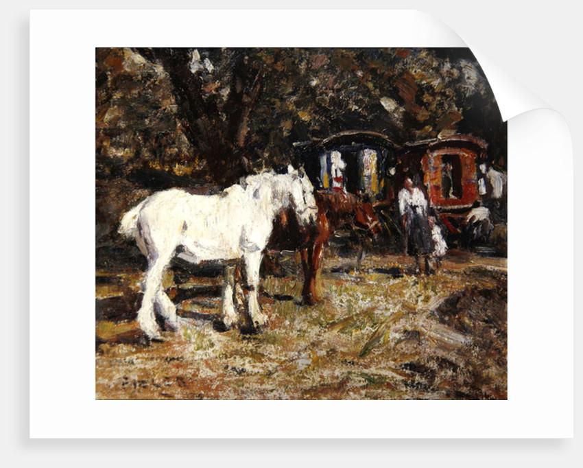 The Gypsy Encampment by Harry Fidler