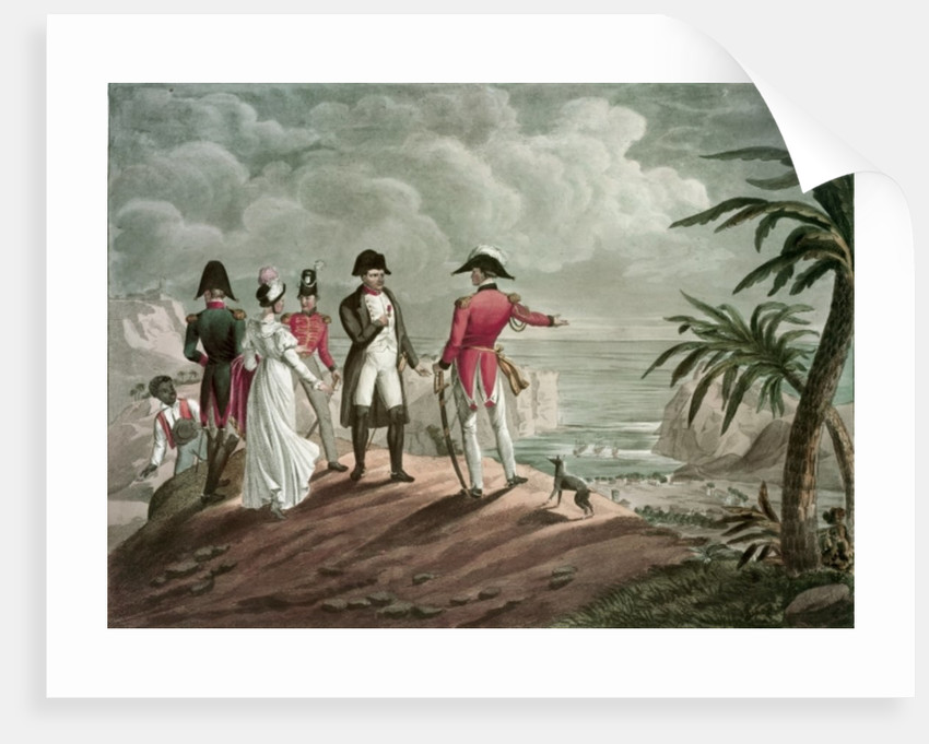 Bonaparte on St. Helena by Francois Martinet