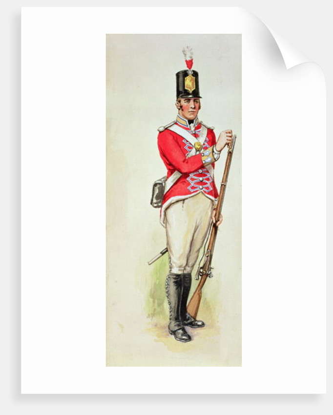 British soldier in Napoleonic times carrying a musket by English School