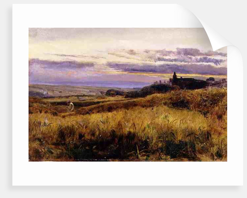 Cornfield at Sunset by John William Inchbold