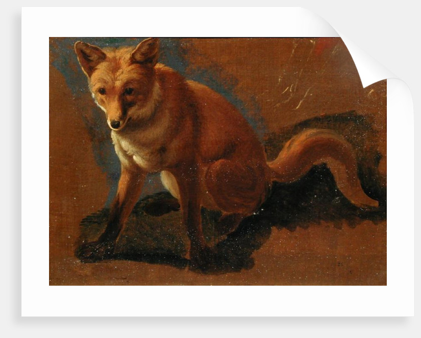 Study of a Fox by Jacques-Laurent Agasse