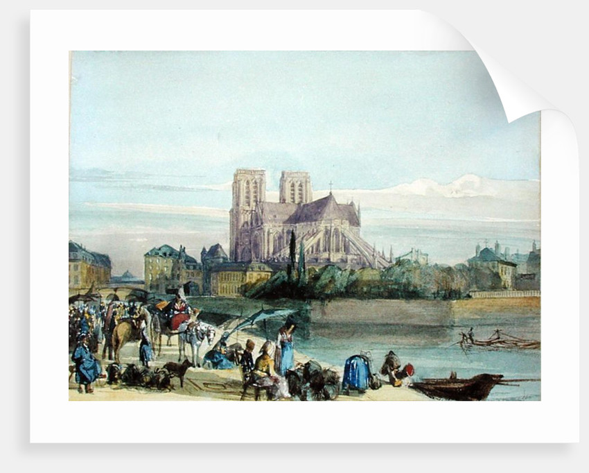 Notre Dame by Thomas Shotter Boys