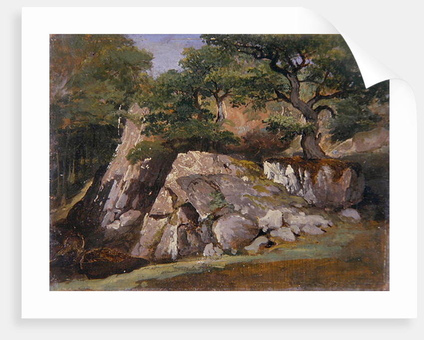 A View of the Valley of Rocks near Mittlach by James Arthur O'Connor