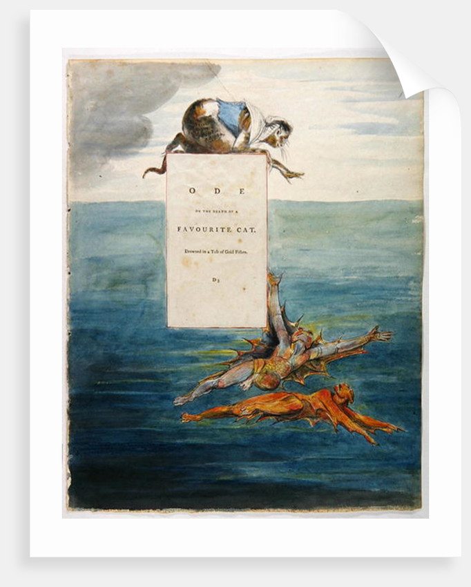 Bottom Fishing near Totten Mill by William Blake