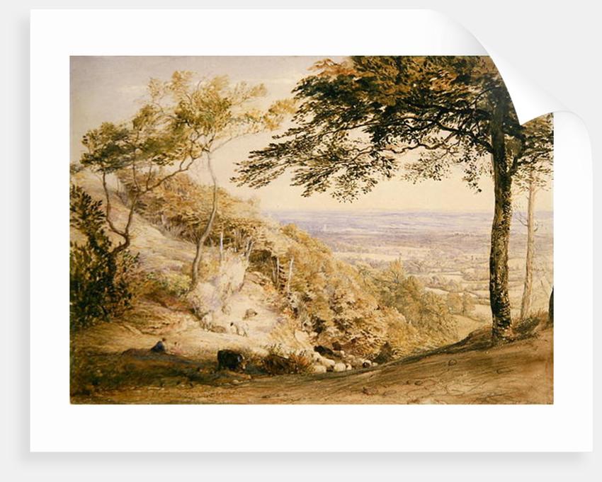 Wilmot's Hill, Kent by Samuel Palmer
