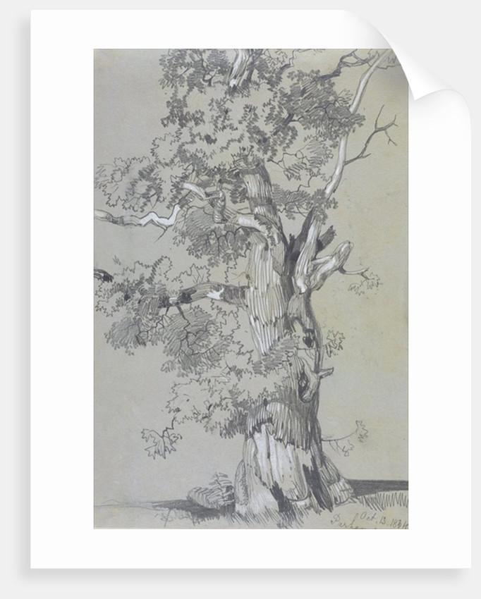Parham, 13 October by Edward Lear