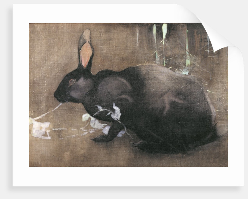 A Black Rabbit by Joseph Crawhall