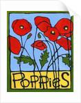 Poppies by Megan Moore