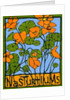 Nasturtiums by Megan Moore
