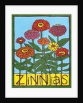 Zinnias by Megan Moore