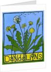 Dandelions by Megan Moore