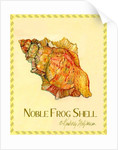 Noble Frog Shell by Kimberly McSparran