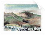 Hills in the Lakes by Vincent Alexander Booth