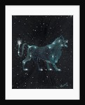 Star sign - Leo by Vincent Alexander Booth