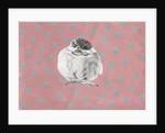 Chubby little bundle by Nancy Moniz Charalambous