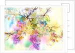 Fruit on the Vine by Neela Pushparaj