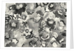 floral in black and white by Neela Pushparaj