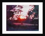 Light grounding by Helen White