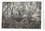 Dahlias in Jug by Calum McClure