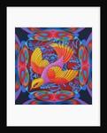 Firey-tailed flier by Jane Tattersfield