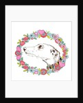 Silvertips Greyhound With Floral Border by Jo Chambers