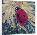 Ladybird by Kirstie Adamson