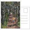 Oranjezon Forest, The Netherlands by Kirstie Adamson