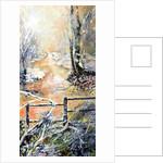 Early winters morning along Markeaton brook by Mary Smith