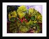 rhubarb by jocasta shakespeare