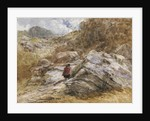 Mountain Pass at Bettws-y-Coed, 1851 by David Cox