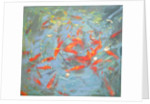 Goldfish by Andrew Macara