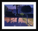 The Swing, Paphos, Cyprus by Andrew Macara