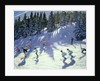 Fast Run by Andrew Macara
