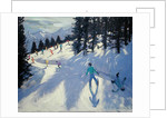 Austrian Alps by Andrew Macara