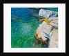 Detail of The Diver, Plates Rock, Skiathos, Greece by Andrew Macara