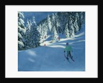 Fresh Snow, Morzine, France by Andrew Macara