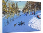 Family sledging, Youlgreave, Derbyshire by Andrew Macara