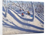 Winter Bramcote Nottingham by Andrew Macara
