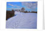 Footprints in the Snow by Andrew Macara