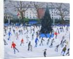 Skating, Natural History Museum by Andrew Macara