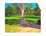 Cricket match,Botanical Gardens,Dominica,Grenadines by Andrew Macara