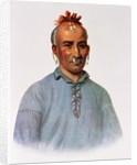 Kish-Kal-Wa, a Shawnee Chief by American School