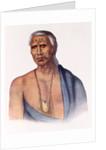 Lap-Pa-Win-Soe, a Delaware Chief by Gustavus Hesselius