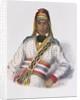 Yoholo-Micco, a Creek Chief by Charles Bird King