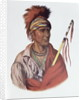 Notchimine or No Heart, an Iowa Chief by Charles Bird King